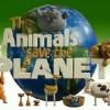 Animowane zwierzęta ratują planetę