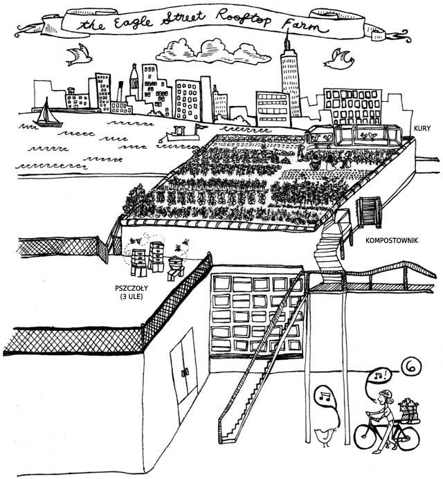 Schemat ogrodu na dachu budynku