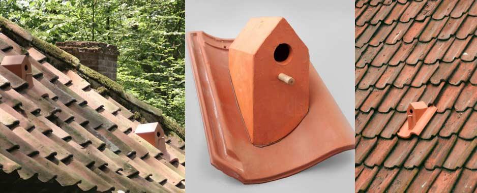 Budka dla ptaków na dachu