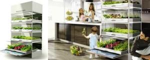 Nano Garden hydroponiczny ogród w kuchni