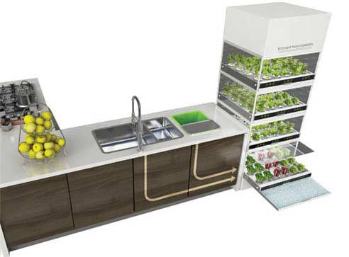 Domowy Ogród hydroponiczny