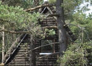 elewacja i dach z wodorostów