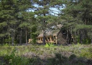 Dom ocieplony wodorostami