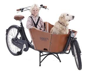 Rower cargo transportowy Babboe