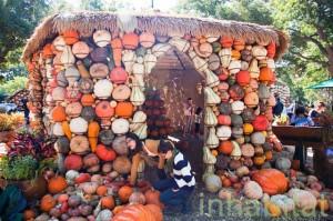 Halloweenowy dom z dyni