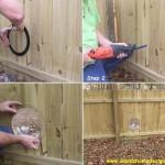 Jak zrobić dziurę w płocie