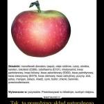 Skład jabłka