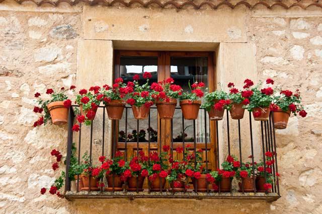 Balkon czerwone kwiaty