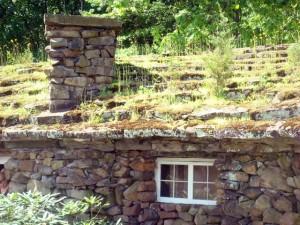 Zarośnięty dach