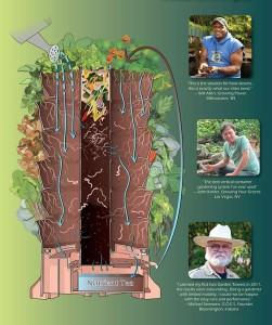 Uprawa domowa warzyw